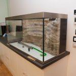 Aquarium 250 litres avec décor rocheux