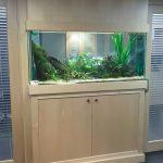 Aquarium 735 litres - Salle d'attente