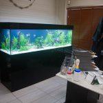 Aquarium eau douce 800 litres