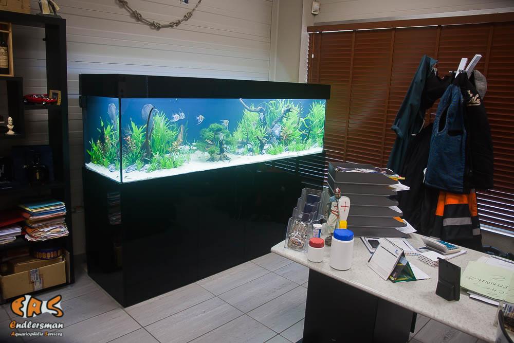 Aquarium sur mesure de 800 litres
